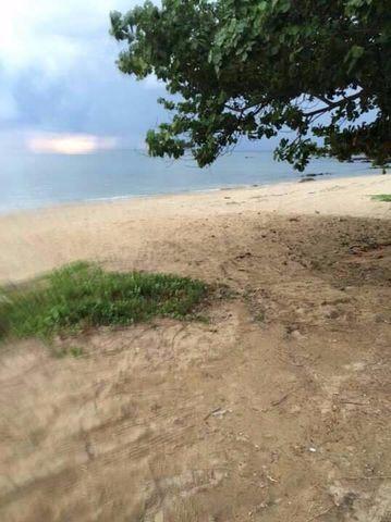 ที่ดินชายหาด โฉนด เกาะลันตา จังหวัดกระบี่ 14 ไร่ 56 ตรว
