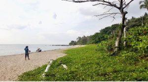 ขาย ที่ดินติดชายหาด สวยมาก เกาะลันตา เพื่อทำรีสอร์ท บ้านพัก